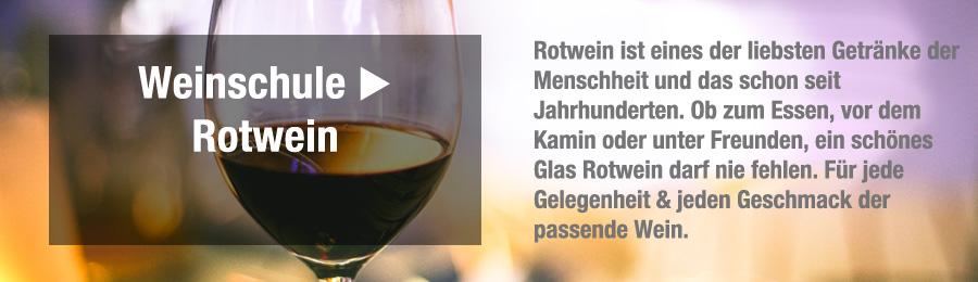 Magazin-Weinwissen-Weinschule8BwktxvNJbzNI