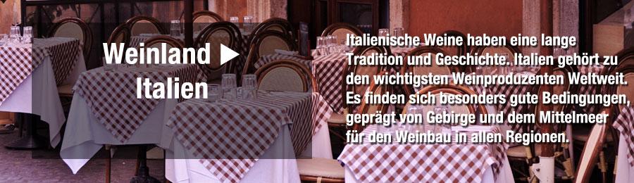 Magazin-Weinwissen_Italien_Weinland_italienischer-Wein