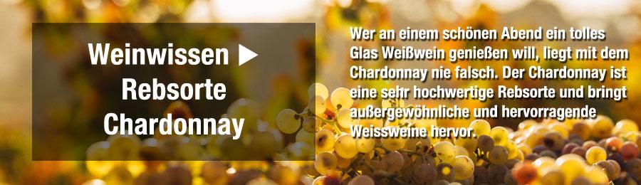 Magazin-Weinwissen_Chardonnay_Wein_Frankreich_Chabils_Burgund62Bm4vALNVW41