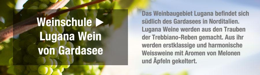 Magazin-Weinwissen-Weinschulewwlc5EvAIWELC