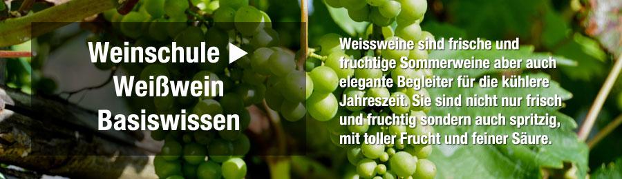 Magazin-Weinwissen-WeinschulecChD0e4yWJyK7