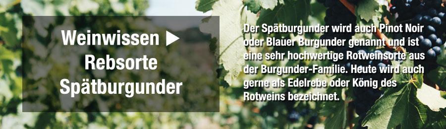 Magazin-Weinwissen_Spa-tburgunder_Wein_Weissherbst_Rose_Baden